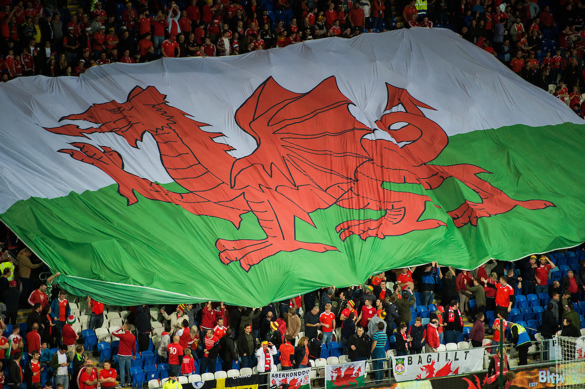 FAW Council: South Wales Area By-Election