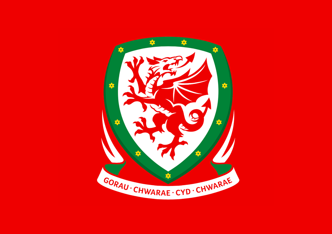 Wales Fall to Gallant Defeat